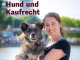 Neue Broschüre: Hund und Kaufrecht